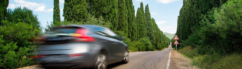 Renovación del Permiso de Conducir en Palma de Mallorca